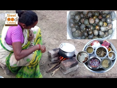 Village Food Factory | How to Cook Snails Curry In India | Street Food Catalog