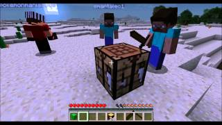 Minecraft:Multiplayer Survival part 1