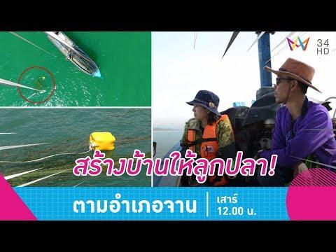 หร่อยจังฮู้! แกงคั่วหอยสันขวาน-แกงเลียงหอยกะทิ อ.สิชล จ.นครศรีฯ - วันที่ 16 Jun 2018