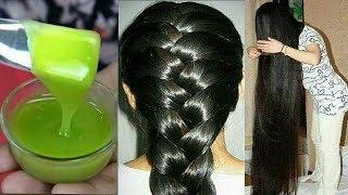 सुबह बाल धोने से पहले Aloe Vera इस तरह लगालो बाल इतने घने लम्बे व सिल्की साइन हो जायेगे/hair growth