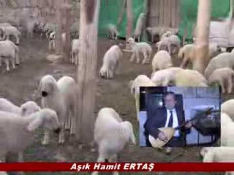 HAMİT ERTAŞ İŞ ADAMLARINA SÖYLEDİ / Haydar ALÇIK