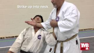 One Minute Bunkai: Seisan #2