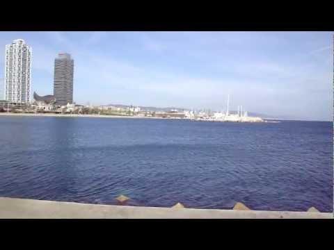 Barcelona fishing pier. 360 view.
