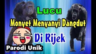 Monyet Nyanyi dan Joget # Parodi Dangdut Di Rijek Koplo - Jenita Janet
