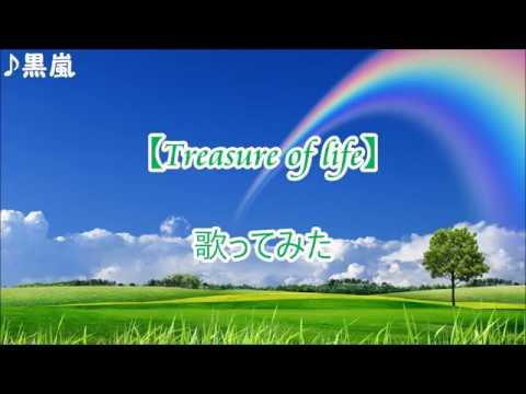 嵐 【Treasure of life】 歌ってみた
