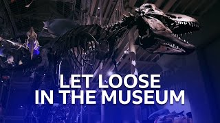 Dinosaurs And Other Amazing Creatures | One Night In The Museum | BBC Scotland