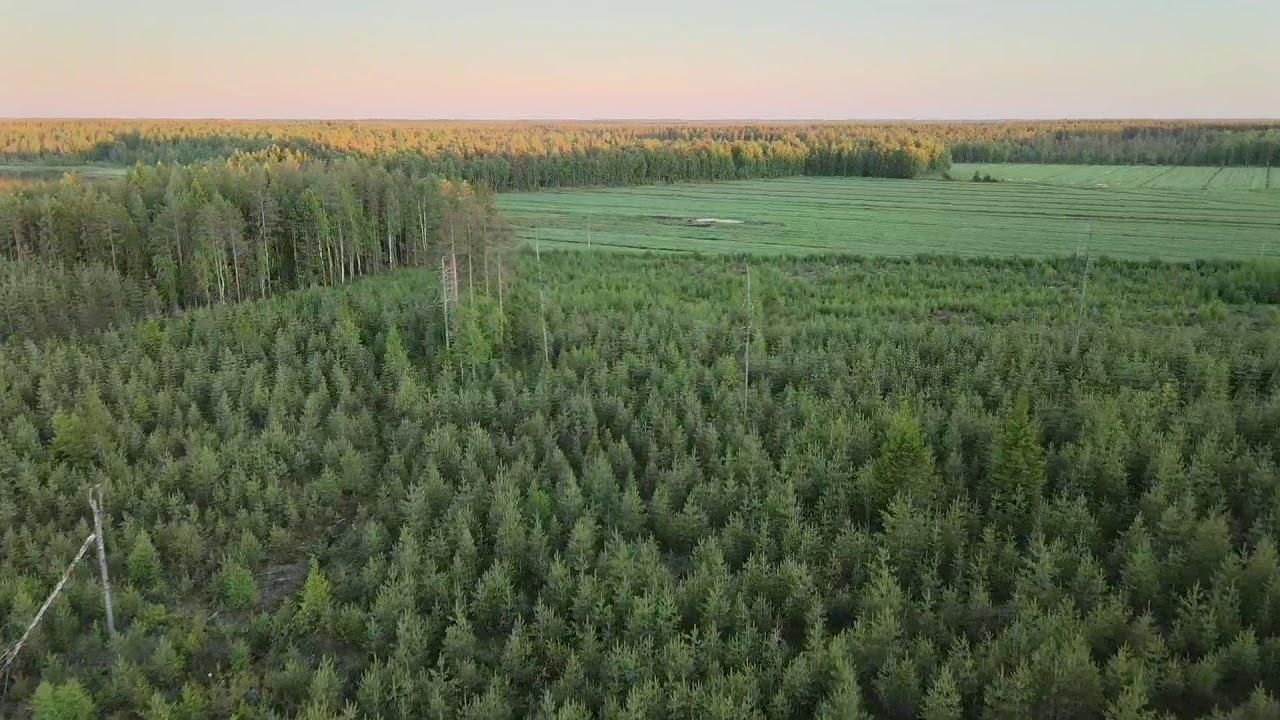 Kiviharju Oulu