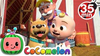 Download Bingo (Farm Version) + More Nursery Rhymes & Kids Songs - CoComelon