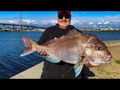 Hunt For Big Red Melbourne Snapper Port Phillip Bay