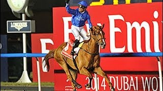 2014 Dubai World Cup