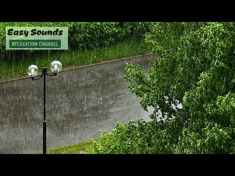 Tropical WIND On A RAINY Day-Rain And Thunder Sounds For SLEEP & Relaxation