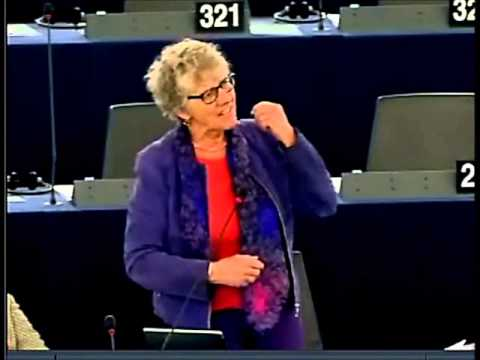 East of England MEP condemns Biased EU Parliament Report on Local Firm