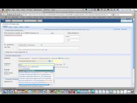 NCBI Blast search tutorial