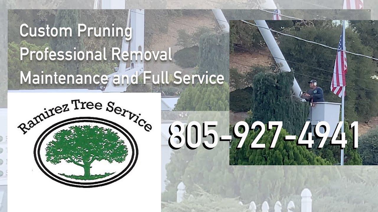 Ramirez Tree Service.  805-927-4941
