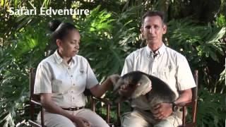 Safari Edventures - Glenn and Nikki Fried-YouTube