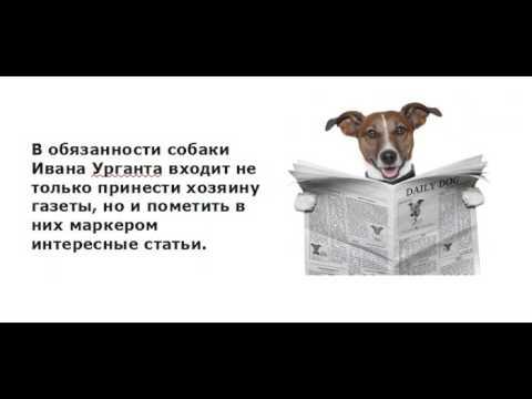 Анекдоты про собак [20] -