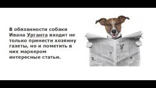 Анекдоты про собак. Выпуск 2