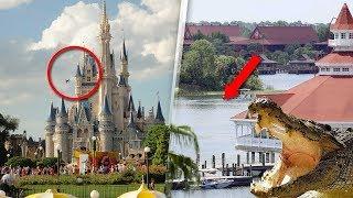 14 Unzulässige BEKENNTNISSE von Disneyland-Angestellten