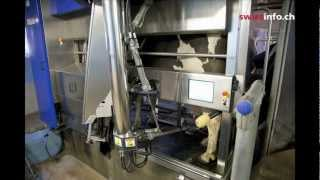 Milk farming in the age of robots