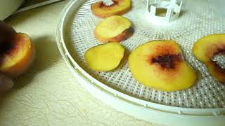 Dehydrating Peaches / Nectarines FASTEST Easiest WAY