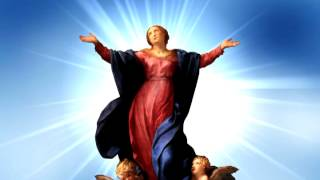The Assumption of the Immaculate Virgin Mary, Body and Soul into Heaven