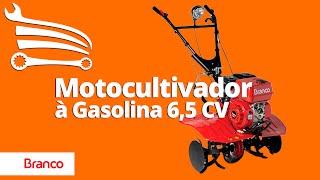 Motocultivador в Бензин 6,5 CV Ручний запуск BTTG 6.5 800 - Магазині Механіка