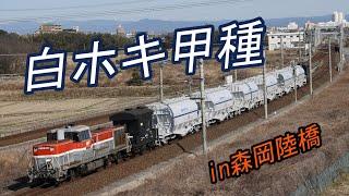 【白ホキ】  ホキ1100形 甲種輸送を撮影  【in森岡陸橋】