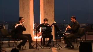 G. Kummer- Trio-Flute, Clarinet, Bassoon