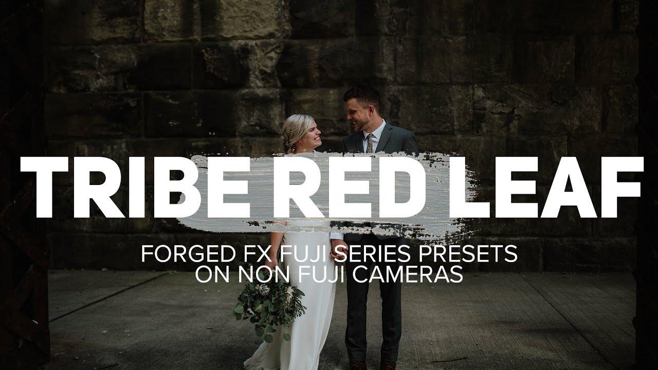 tribe red leaf presets download
