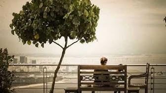 21. Путешествие в Рио де Жанейро
