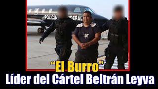 """Cae  """"El Burro"""" líder del Cártel Beltrán Leyva en Acapulco"""