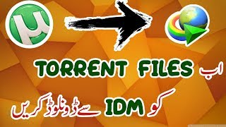 Download Torrent Movies And Files With IDM 2018 | Urdu