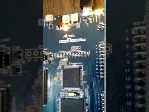 ARM Cortex M4 - Blinking light