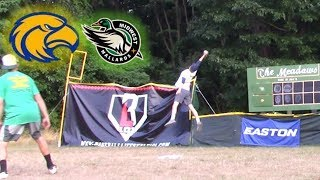 AMAZING WIFFLE BALL CATCH | Mallards vs. Eagles | MLW Wiffle Ball 2018