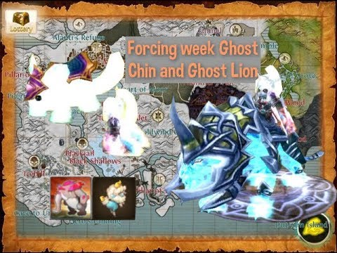 [Order And Chaos] Forcing Week Ghost Chinchilla & Ghost Lion : Epic Mounts, Epic Pets