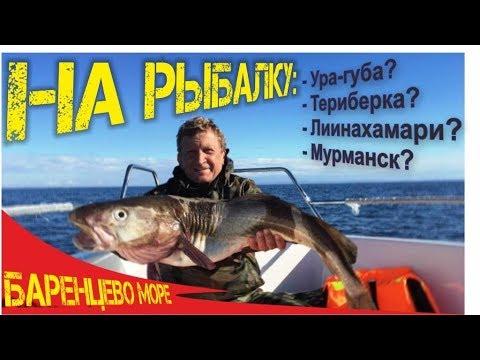 Места выхода в Баренцево море на рыбалку на треску