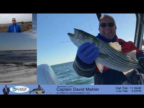 Jones Inlet Fishing Report December 5, 2019