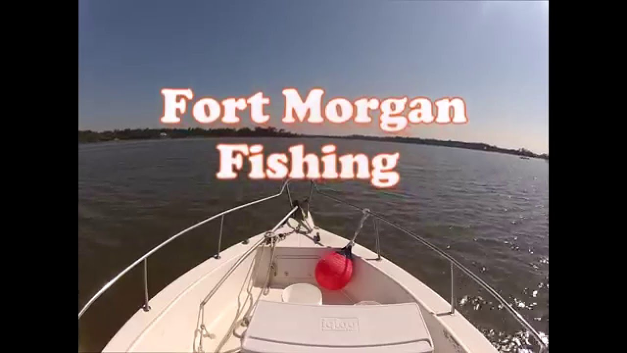 Fort morgan fishing red snapper and kings youtube for Fort morgan fishing charters