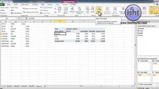 PIOVAT TABLE-OPTIONS-DATA  ACTIONS IN MS EXCEL 2010 IN HINDI