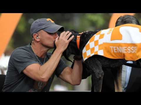 Tennessee Volunteers---Life Is Orange.wmv