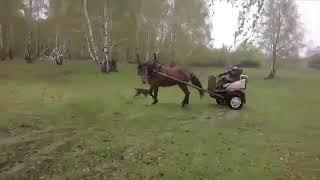 vidmo org Surovyjj drift na loshadi 640
