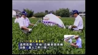 GEM TEA HARVESTING MACHINE AND PLUCKING MACHINE