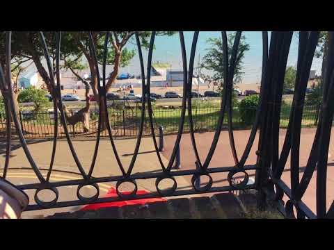 Balcony view summer 2017