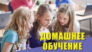 Как перевести ребенка на домашнее обучение. Онлайн школа