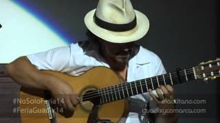 Granaina de Paco de Lucía. Juan Miguel Giménez