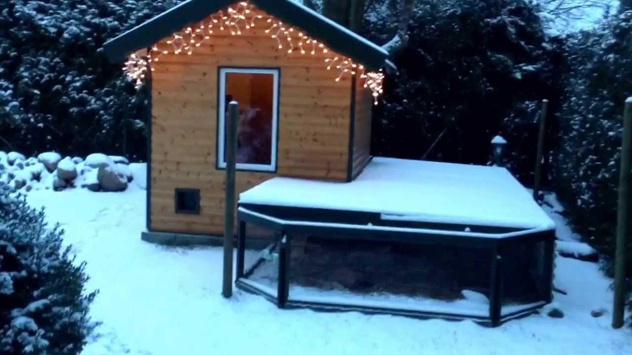 meerschweinchen im winter wonderland sieht das romantisch