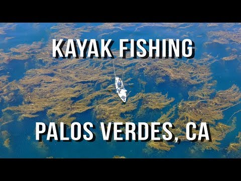 Kayak Fishing Palos Verdes Kelp Forest