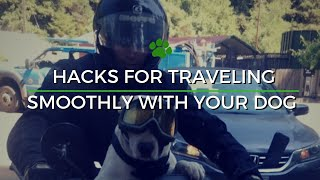 Happy Tails Tours - Dog Travel Products Intro