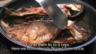 Pescado Frito/ Fried Fish