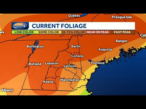 Fall foliage report: Impressive autumn colors seen across much of NH